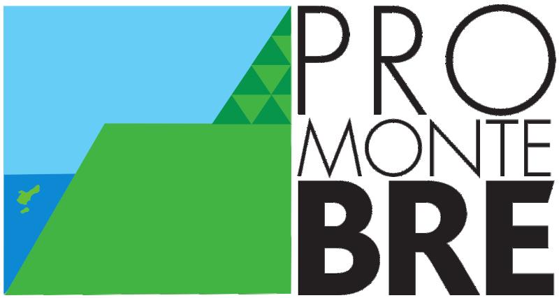 Pro Monte Brè